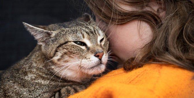 愛猫にしておけば良かったと後悔する『5つのこと』