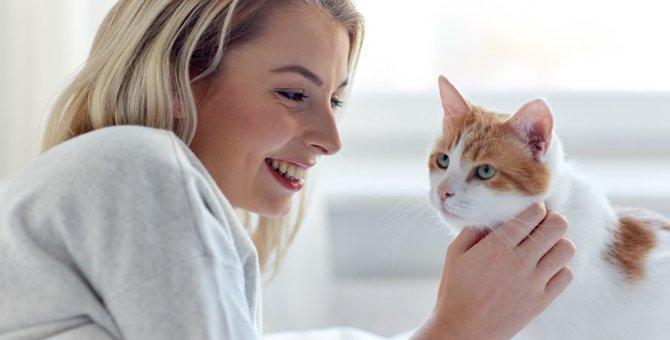 猫がゴロゴロと喉を鳴らす理由やその効果