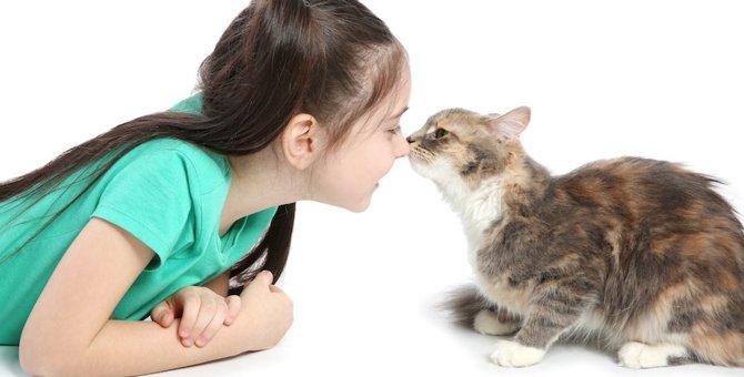 猫が口の臭いを嗅いでくるのはどうして?6つの心理