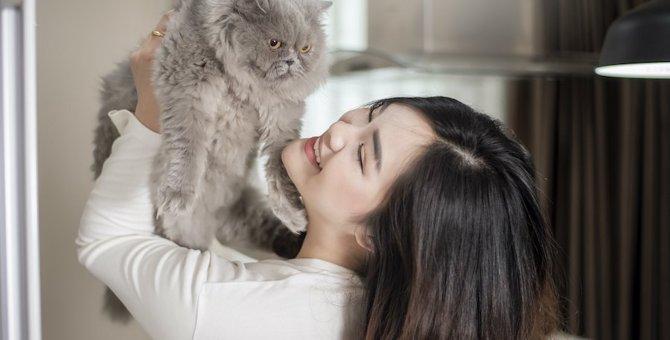 猫を『イライラ』させる飼い主の行動5つ
