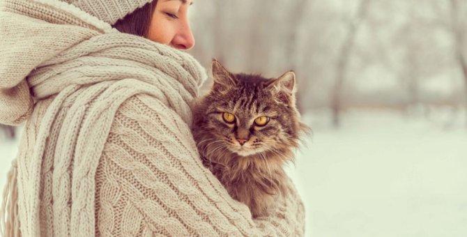 猫の抱き方の正しい方法と注意点