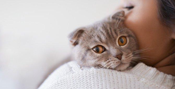 猫になぜか無視される人にはこんな原因があった!