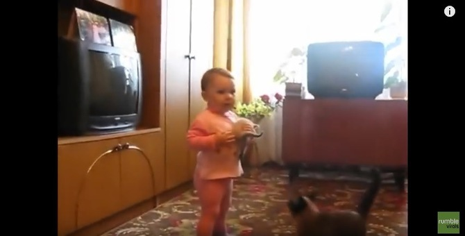 鳴いている仔猫を母猫が奪還!そしたら赤ちゃんが大号泣!?
