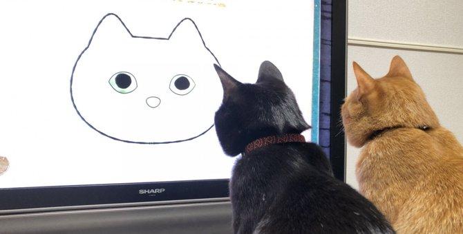 LAYLAの12猫占い【4/13〜4/19】のあなたと猫ちゃんの運勢