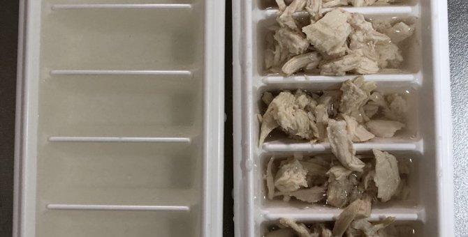 夏バテしらず!猫のために鶏肉の氷のおやつを作ってみた!
