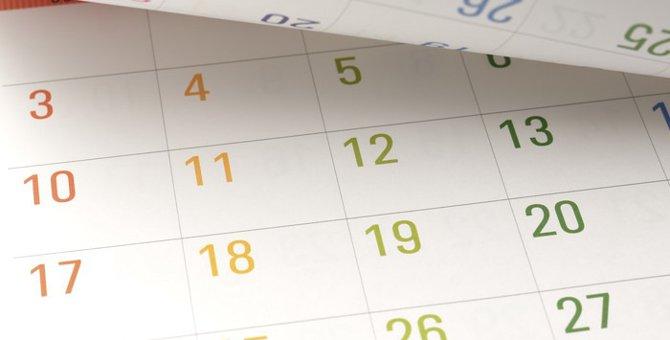 8月8日は『世界猫の日』!にゃんこを労う日なんです♪