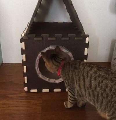 ジョイントマットを使って猫ハウスを手作り