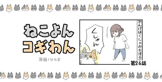 ねこよんコギわん【第26話】「くしゃみ」