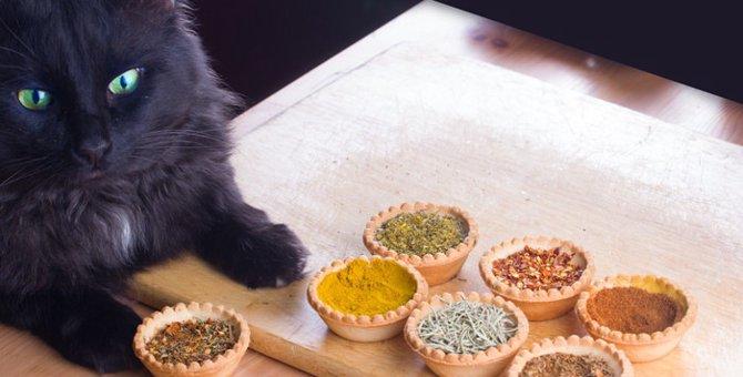 猫に山椒が危険な3つの理由と対処法