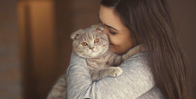 可愛くてつい…。猫の飼い主がやりがちなNGな甘やかし行為8つ