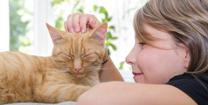 猫を繰り返し褒める『陽性強化法』とは?正しい実践の仕方を解説!