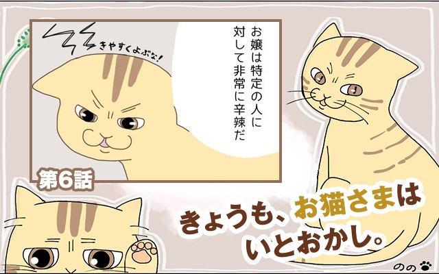 きょうも、お猫さまはいとをかし。【第6話】「猫愛の深さ」