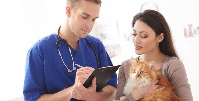 猫の病気のサインを見逃さない方法