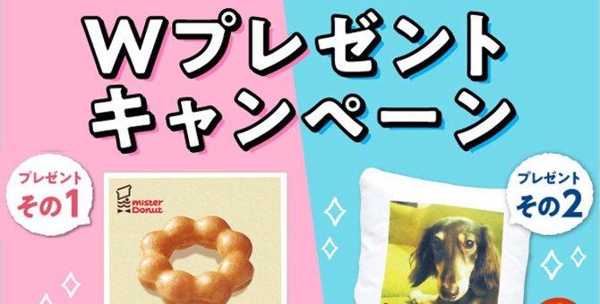 【5月31日まで】ミスタードーナツギフトチケット200円&ペットの写真入りクッションのWキャンペーン
