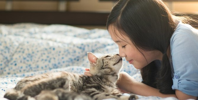 猫が子供や病気の動物をいたわる6つの理由