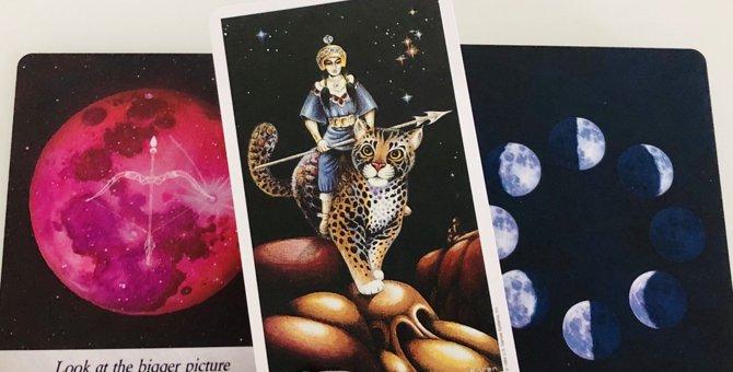 Laylaの月占い 17日の満月は『愛猫の苦手な事』が克服できるかも?