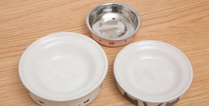 猫用食器のおすすめ人気ランキング18選!選び方や洗い方も紹介