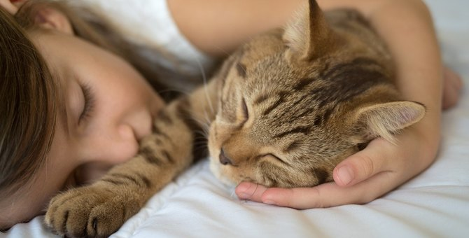 猫が『一緒に寝たがる』時の気持ちとは?3つの心理と気を付けるべきこと
