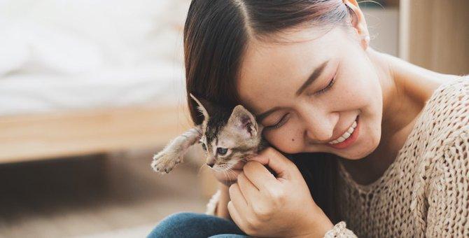 好かれたい一心で…実は猫にNGな行為4つ