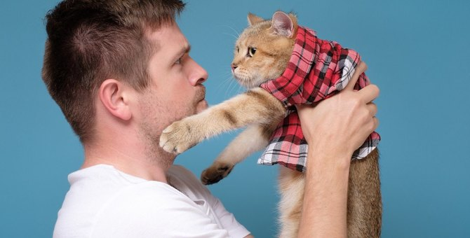 1193|猫に心の傷を負わせる『最悪な叱り方』3つ