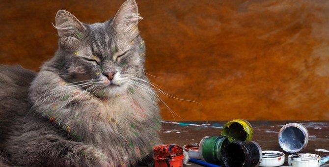 猫が部屋を散らかす6つの理由
