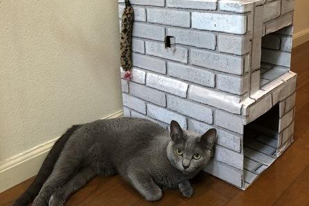 100円ショップのリメイクシートでおしゃれに!ダンボールで作る『猫の三階建てハウス』