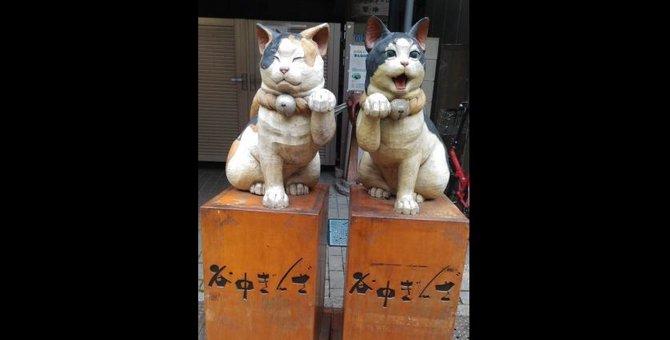 猫好きの聖地「谷中銀座商店街」絶対行きたい猫スポット3選