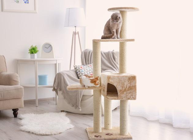 大型の猫用キャットタワーおすすめの商品3選