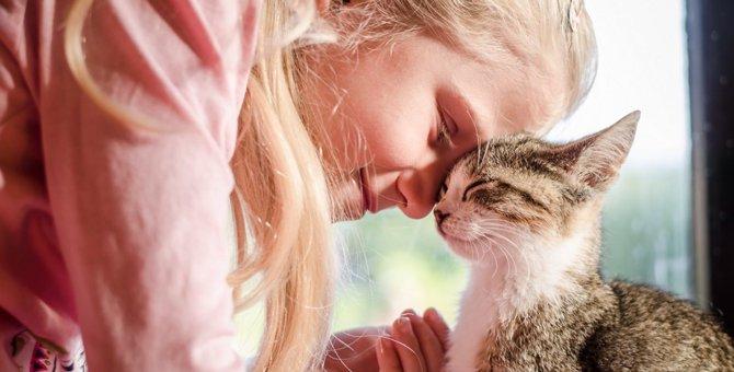 猫を撫でると喉がゴロゴロ鳴る理由