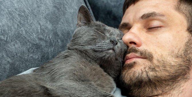 猫が『飼い主が寝ている時にしがちなこと』ランキングTOP5