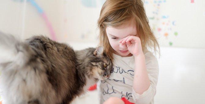 猫が飼い主を起こしてくるのはどうして?