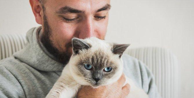 猫が飼い主にストレスを感じること3つ