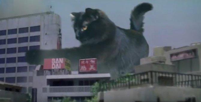 【コラ映画猫】アウル・キティのゴジラならぬ「キャッジラ」が大暴れ!