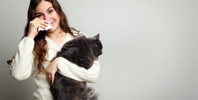 『猫アレルギー』とは?発症する原因や4つの症状・対処法を解説