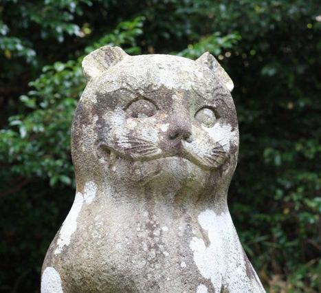 日本唯一の『狛猫(こまねこ)』がいる神社「京都 金比羅神社」