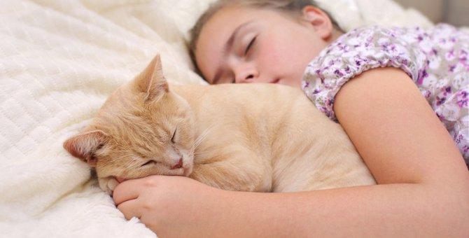 愛猫はどこで寝てる?人と添い寝する2つのポジションと気持ち