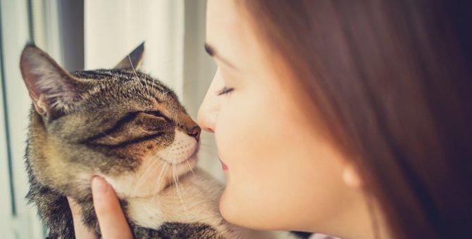 猫の知能レベルは人間でいうとどれくらい?