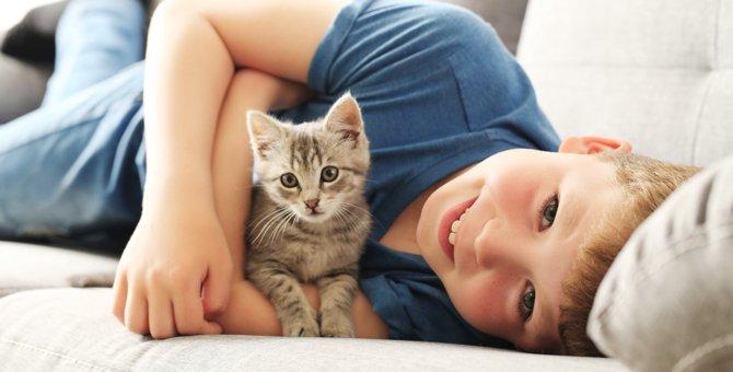 猫アレルギーを克服する4つの方法
