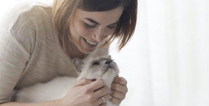 体罰は絶対NG!猫への正しいトレーニング方法3つ