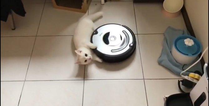 「ルンバだけに任せてられない!」ルンバにしがみつく猫ちゃん♡