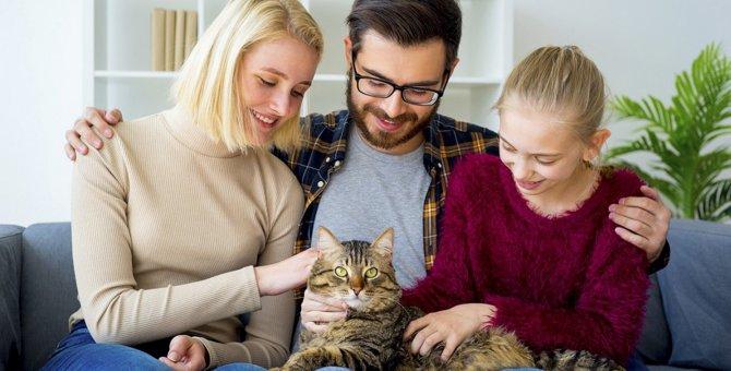 お迎えした猫のために『必ずした方がいいこと』5つ