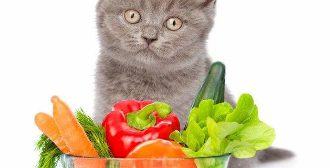 猫に野菜は与えても大丈夫?食べて良いもの悪いもの