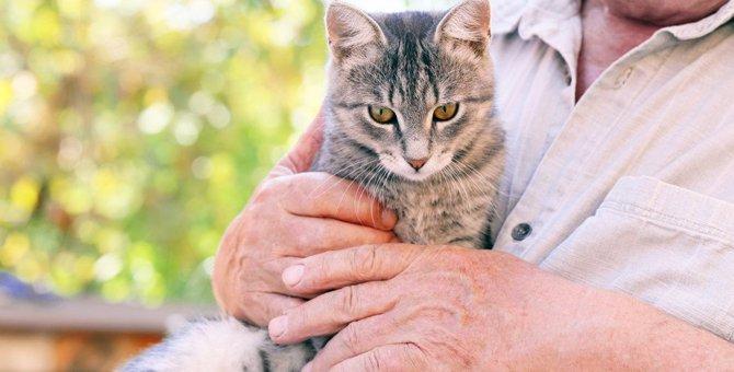 猫の老化スピードが早くなってしまう飼い方6つ