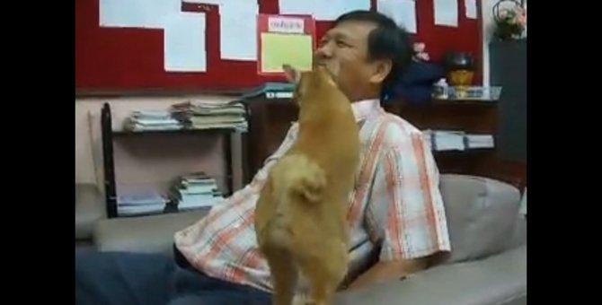 「それ、やめるにゃ!」お父さんの歌は聞きたくない猫ちゃん