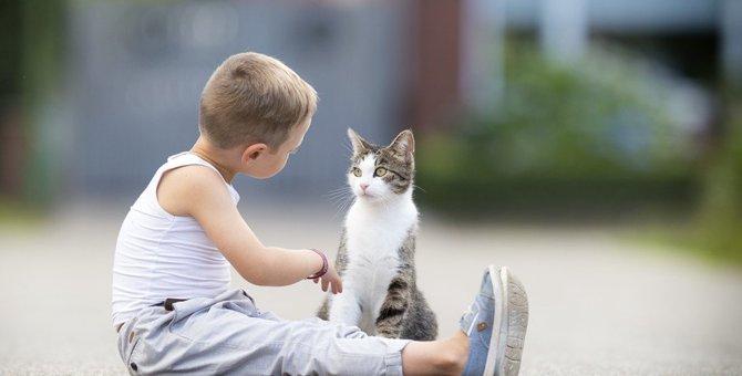 愛猫と会話出来るかも!?猫が理解できる人の言葉7選
