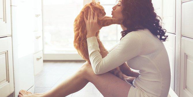 猫って人の言葉を理解してるの?知能や覚えさせ方について