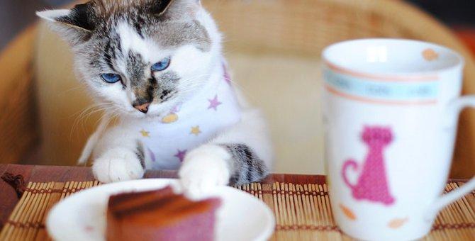 猫のグラスが可愛い!猫好きに人気のオススメ商品4選!