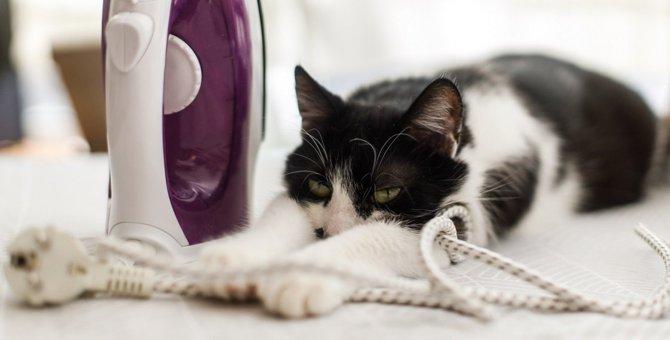 感電注意!コードやケーブル類の猫対策4つ