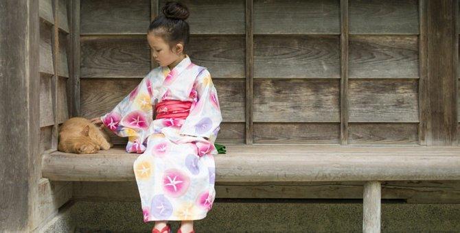 江戸時代の猫ブームと歴史