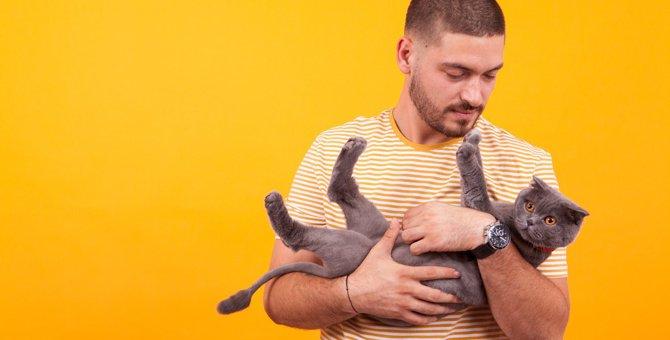 猫を『抱っこ』する時に起こりやすいトラブル5つ